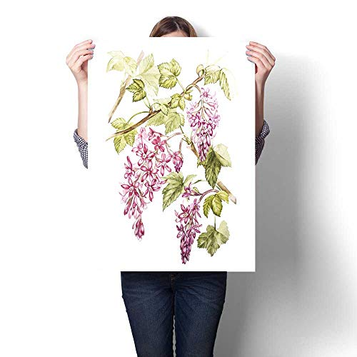 Anshesix Canvas Wall Art Hand Drawn Watercolor Botanical Illustration of Flowers of Black Currant Element for Design of Invitations Movie Posters Fabrics and Other Objects Art Stickers (Raven Fabric Black Frame)