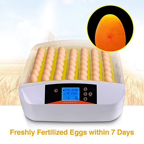 Currens Egg Incubator Digital Automatic Poultry Hatcher Egg Turning,Eggs Incubators Fertilized Chicken Duck Quail Brids Eggs for Hatching 56 Egg Incubator US Stock