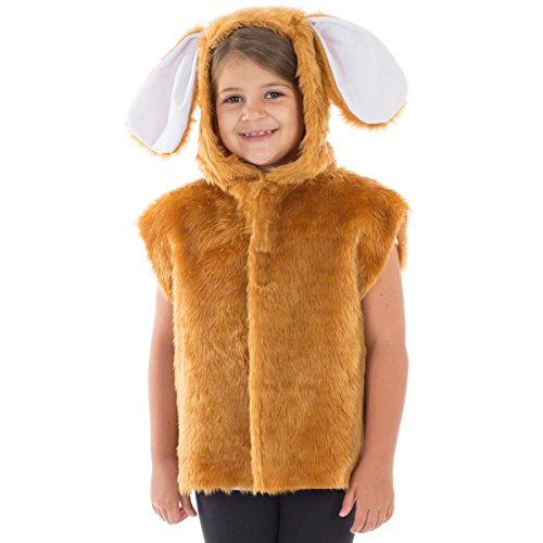 Brer Rabbit Costumes - Charlie Crow Brown Rabbit Costume for