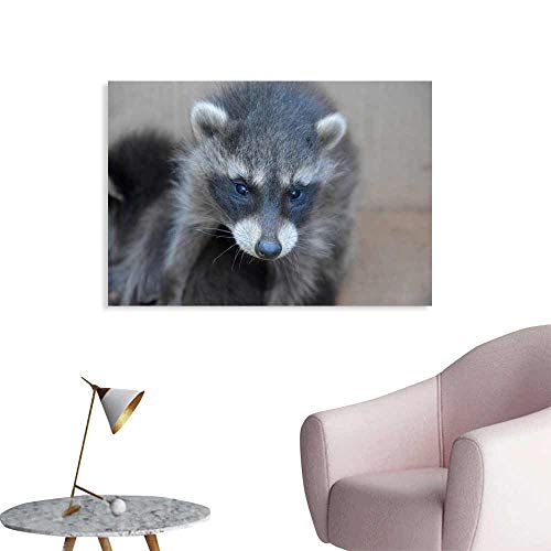 (Warm Family Wall Art Decor Poster Painting A Small Racoon - Baby Decorations Home Decor 35