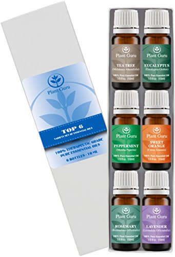 Essential Oil Variety Set Kit - 6 Pack - 100% Pure Therapeutic Grade 10ml. Set includes- (Peppermint, Lavender, Sweet Orange, Rosemary, Eucalyptus & Tea Tree) (Young Oils Starter Kit compare prices)