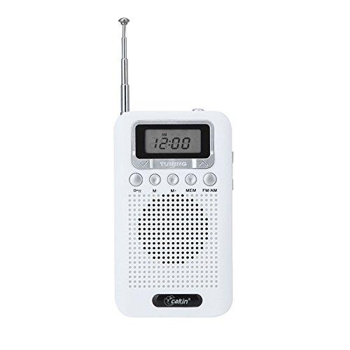 Cakin 828 Portable FM/AM radio speaker (828 -