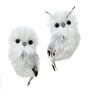 "Best Epic Trends 41X4YiTb62L._SS300_ Kurt Adler 5.1"" Silver Hanging Owl Christmas Ornament 2 Assorted"