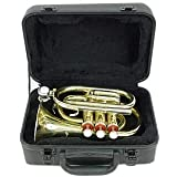 Signature Music Brass Pocket Trumpet with Case New 2150L