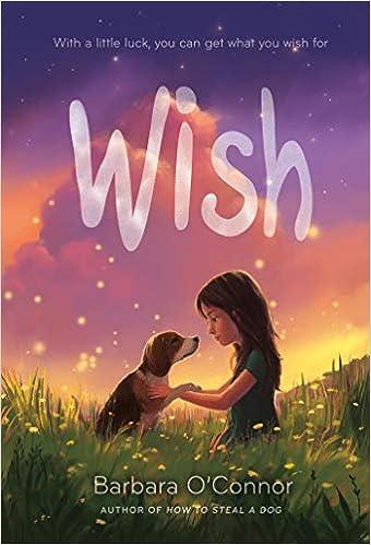 Wish: Barbara O'Connor: 9780374302733: Amazon com: Books