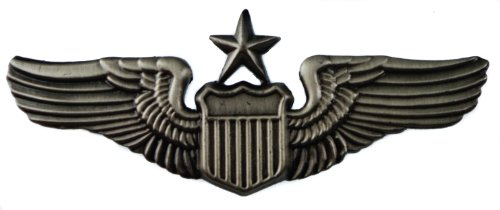 Senior Pilot US United States Air Force USAAC Wings Large Quality Hat or Lapel pin D3