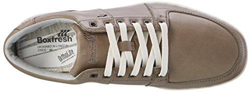 Boxfresh Spencer Icn Lea Mgry/Grif Gry, Zapatillas para Hombre Gris