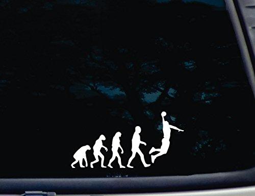 The Evolution of Basketball - 7 1/2