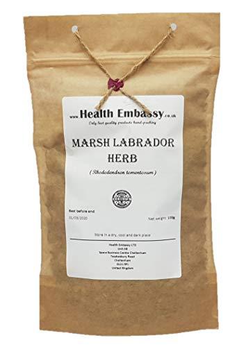 Marsh Labrador Herb (Rhododendron Tomentosum) - Health Embassy - 100% Natural (100g)