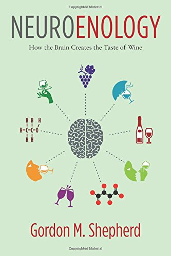 Neuroenology: How the Brain Creates the Taste of Wine by Gordon Shepherd