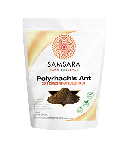 Polyrhachis Ant Extract Powder - 20:1 CONCENTRATED EXTRACT ... (2oz) (Polyrhachis Ant Extract compare prices)