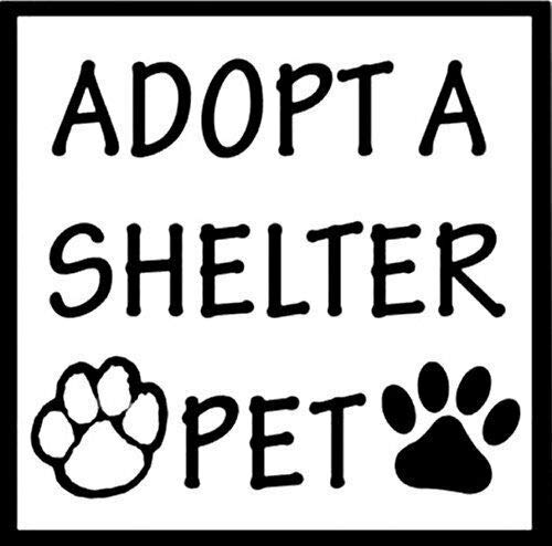 (MAGNET 4x4 inch Adopt a SHELTER PET Sticker (dog cat paw no puppy mill) Magnetic vinyl bumper sticker sticks to any metal fridge, car, signs)