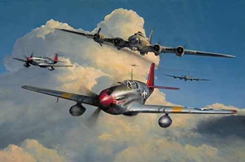 Red Tail Escort Limited Edition Print by Richard Taylor