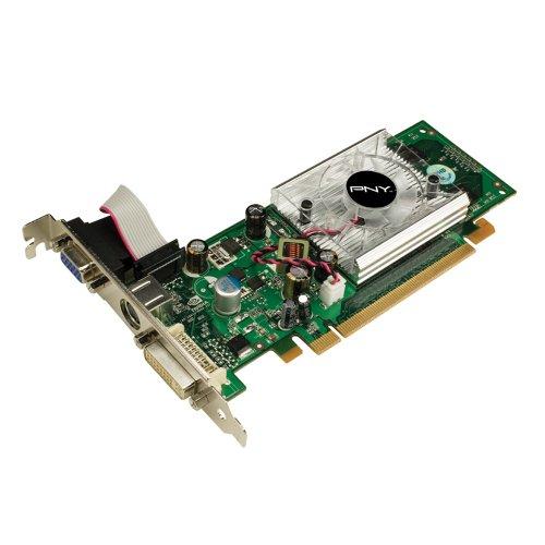PNY GeForce 8400GS 256MB DDR2 PCI-Express 2.0 DVI+VGA+HDTV/SDTV Low Profile Graphics Card (Tv Pci Low Profile Bracket)
