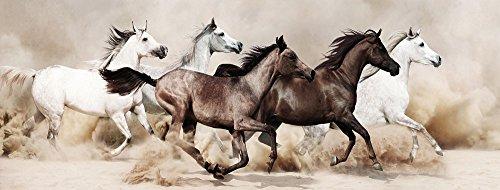 Empire Art Direct - Horse tempered glass wall art