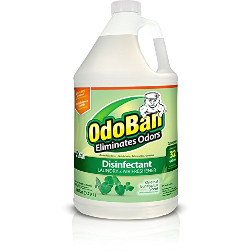 OdoBan 11062-G Disinfectant Odor Eliminator and All Purpose Cleaner Concentrate 128 oz. Eucalyptus Scent