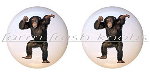 SET OF 2 KNOBS - Dancing Monkey - Monkeys - DECORATIVE Glossy CERAMIC Cupboard Cabinet PULLS Dresser Drawer KNOBS
