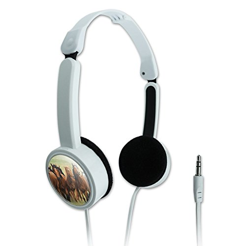 GRAPHICS & MORE Horses on The Prairie Pecking Order Novelty Travel Portable On-Ear Foldable Headphones (Horse Headphones)