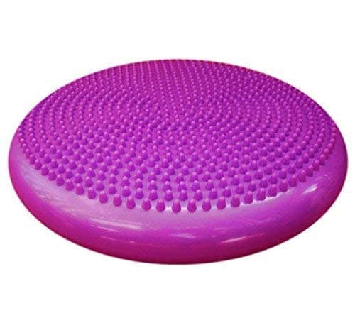Therapist's Choice Inflated Air-Filled Stability Balance Disc-PURPLE