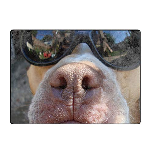 QIUBDSX Front Door Mat Large Outdoor Indoor Entrance Doormat - Sunglasses Dog Animals Reflection Welcome Mats