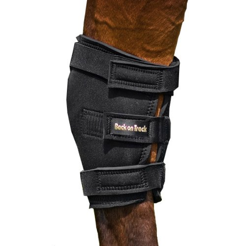 Back on Track 17-Inch Top 14-Inch Bottom Therapeutic Horse Hock Brace with Hole, Large by Back on Track