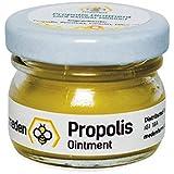 100% Natural Propolis Ointment 20g