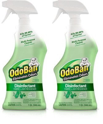 OdoBan 32 OZ Ready-to-Use Disinfectant Fabric and Air Freshener (2, Eucalyptus - Eucalyptus Air Freshener