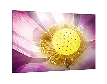 Glass Picture Pink Lotus Flower 60cm X 40cm Amazoncouk Kitchen