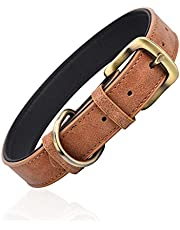 Classic Leather Dog Collar for Small Medium Large Dogs Padded Soft and Strong Adjustable Pet Collars Heavy Duty Dog Collar