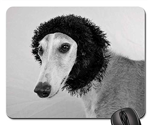 Mouse Pads - Dog View Greyhound Hundeportrait Faithful Look
