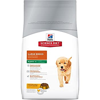 Science Diet Large Breed Puppy Feeding Chart