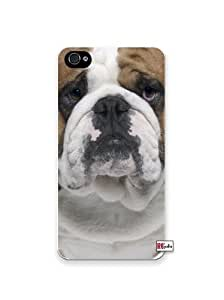 Cute Bulldog Dog Apple iPhone 5C Quality Hard Snap On Case for iPhone 5c/5C - AT&T Sprint Verizon - White Case