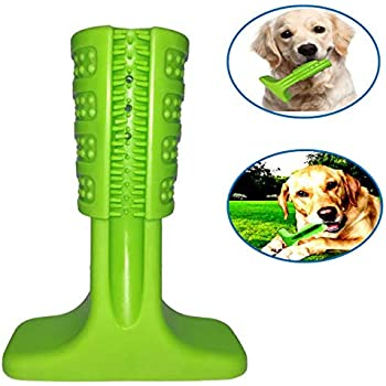 Pet Supplies : LKwxw Dog Toothbrush Chew Toy,Green Rubber