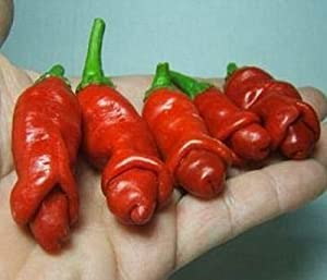 Seeds and Things Peter Pepper Red Hot Pepper 10+ seeds--- by Seeds and Things
