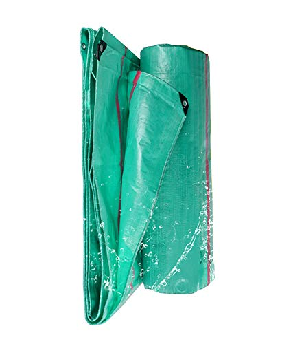 Giant Silver Bbq Trailer (Tarps Tarpaulin Heavy Duty Waterproof for Tarpaulin Canopy Tent/Boat/ Trailers/Cars/ Bikes or Pool Cover, Green (Size : 4×5m))