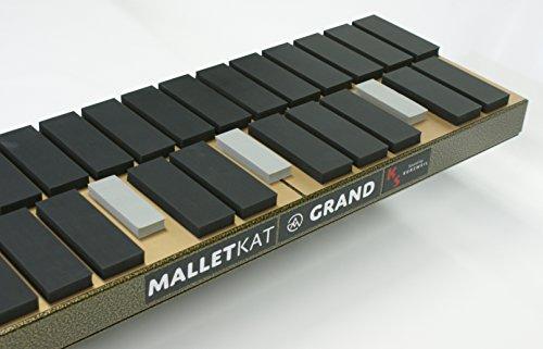 How to buy the best midi xylophone?