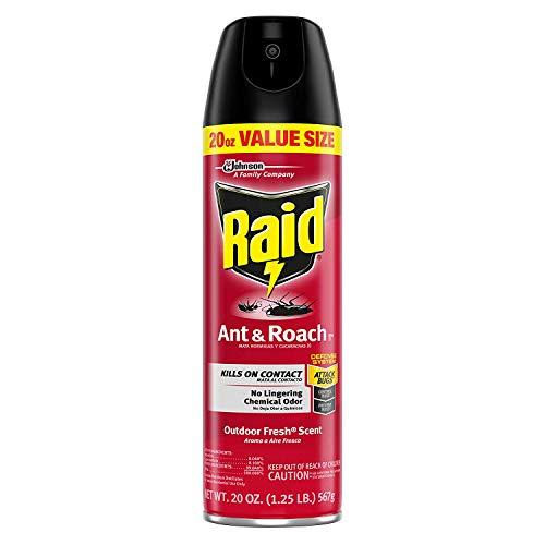 Raid Ant & Roach Outdoor Fresh, 20 OZ (Pack - 1)