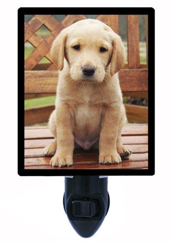 Dog Night Light - Labrador Retriever Labrador Retriever Light