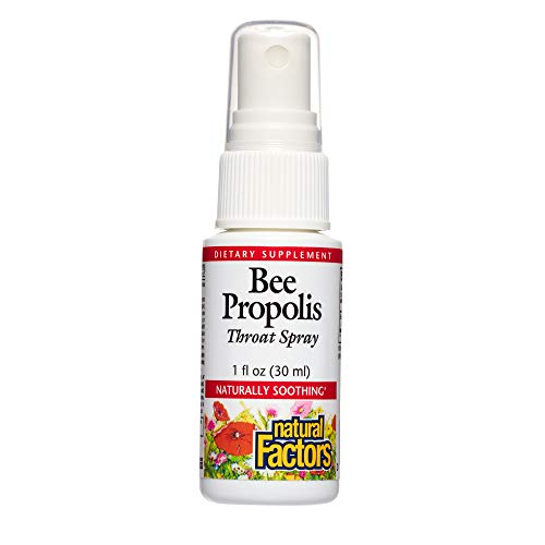 Natural Factors, Bee Propolis Throat Spray, Helps Soothe a Sore Throat and Support Energy Levels, 1 oz (100 servings)