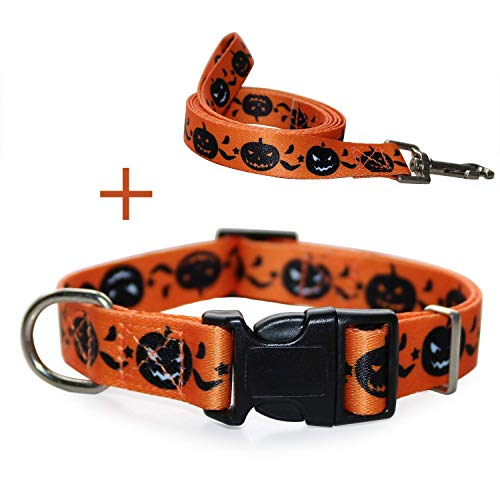 RYPET Halloween Dog Collar and Leash - Halloween Pumpkin Pattern Adjustable Collars for Dogs, Small, Neck 8