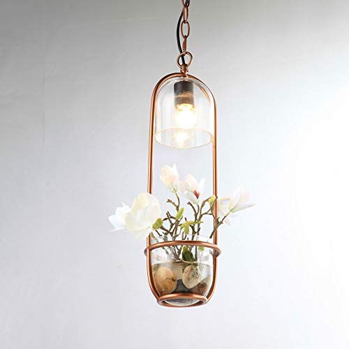 Dicai Glass Suspension Lamp Personality Iron Droplight Nordic Adjustable Metal Pendant Lights Creative Sky Garden Hanging Lamp Simple Chandelier E27 Entrance Dining Room Studio Ceiling Lights