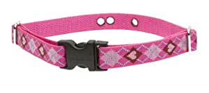 LupinePet 3/4-Inch Puppy Love 9-12-Inch Containment Collar Strap for Small Dogs