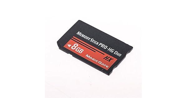 Amazon.com: Original de alta velocidad Memory Stick PRO-HG ...