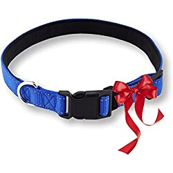 Pet Lovers Club Padded Nylon Dog Collar- Reflective & Waterproof - For Medium & Large Dogs - Blue