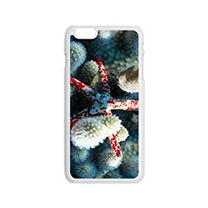 Beautiful Starfish Hight Quality Plastic Case for Iphone 6