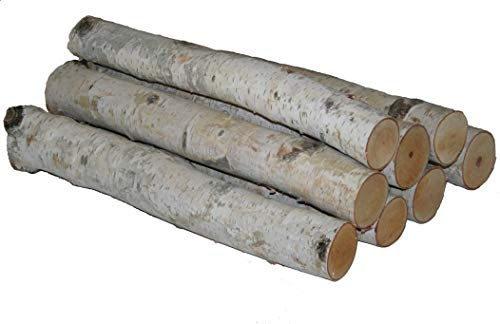 Bundle of White Birch Logs (Holder Log Fireplace Crafts)