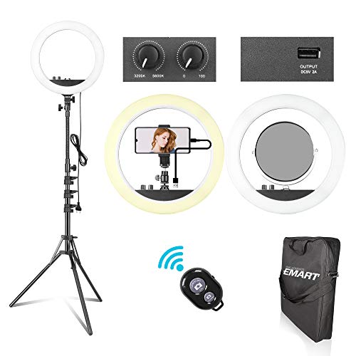 Emart 14 inch 240 LED Ring Light with Stand, Adjustable 3200-5600k Color Temperature Ring Light Kit with USB Charging Interface for Camera Photo YouTube, Portrait, Vlog, Salon Selfie
