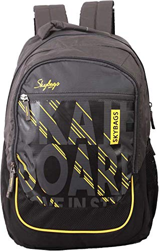 Skybags Arthur 30 L Laptop Backpack (Black)
