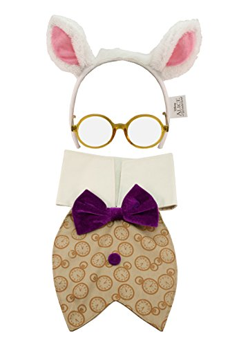 Disney Alice in Wonderland White Rabbit Kit by (White Rabbit Alice In Wonderland Costume Men)
