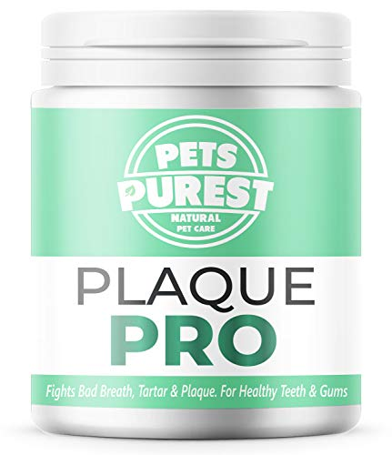 🥇 Pets Purest 100% Natural Plaque Off